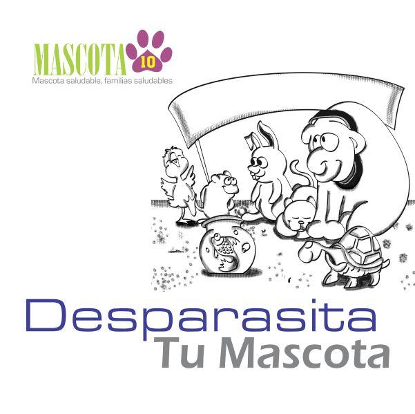 SS - Cabezote Desparasita tus Mascotas 001