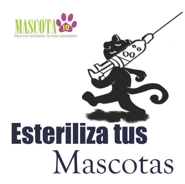 SS - Cabezote Esteriliza tus Mascotas 001
