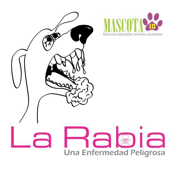 SS - Cabezote Rabia 001