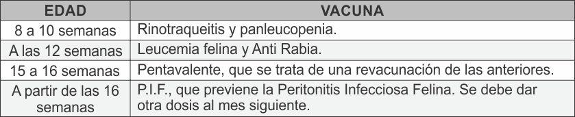Tabla Prevenir 01