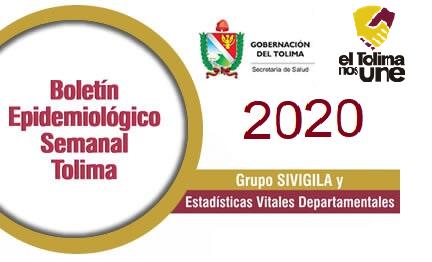 boletin_2020