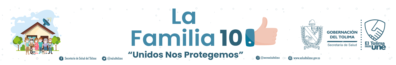 pagina-web-la-familia-10-720x120-px-64