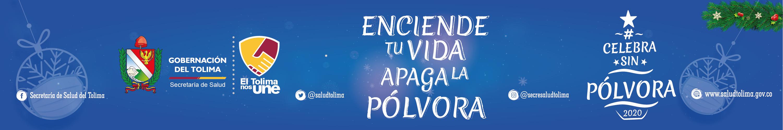 banners-navidad-2020-pagina-web-720x-120-px-09